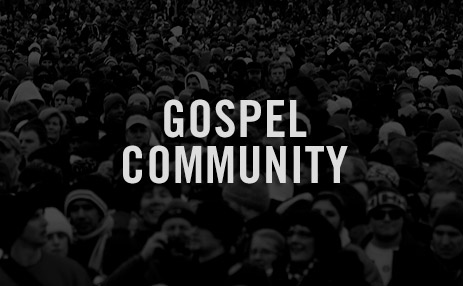 20090608_pitfalls-in-the-pursuit-of-gospel-community_poster_img